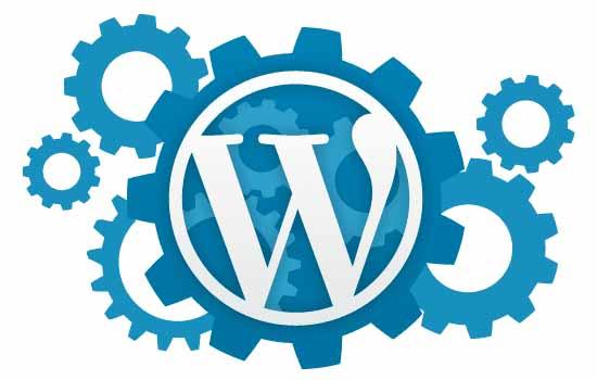 WordPress Menüye İkon Nasıl Eklenir?