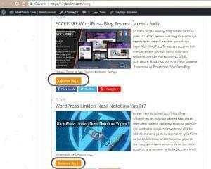 wordpress yazıyı kesmek webbilim.com