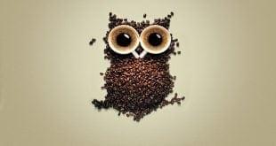 hangi kahve nasil yapilir