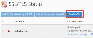 Ücretsiz SSL (HTTPS) Kurulumu