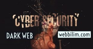 Dark Web 21 milyon parola sızdırıldı