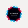 Web Bilim
